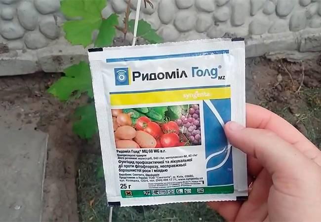 Как применять фунгицид танос для обработки растений