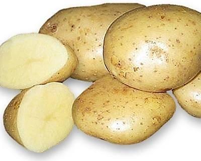 Картофель уладар: описание сорта, посадка, выращивание, уход и отзывы