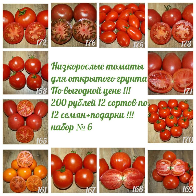 Король закаток — томат минусинский бочковой: описание сорта и особенности выращивания