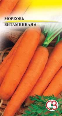 Морковь витаминна.  неприхотливый сорт моркови витаминная 6