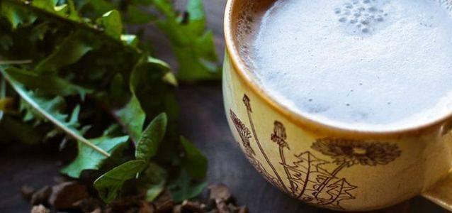 Как сделать мёд из одуванчиков в домашних условиях
