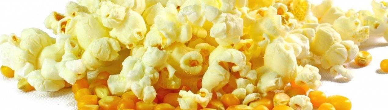 Названия 7 лучших сортов кукурузы для попкорна, особенности выращивания