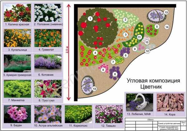 Миксбордеры как оригинальные разграничители сада (22 фото)