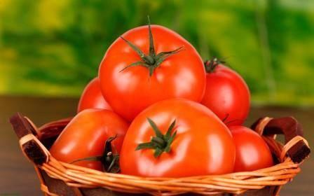 "Томат ""мазарини"": характеристика и описание сорта, рекомендации по выращиванию и фото помидоров"