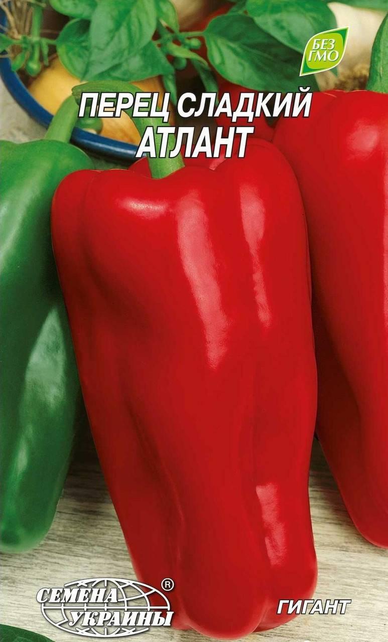 Перец атлант — описание и характеристика сорта