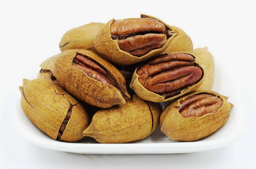 Пекан: полезные свойства, противопоказания, калорийность и отзывы