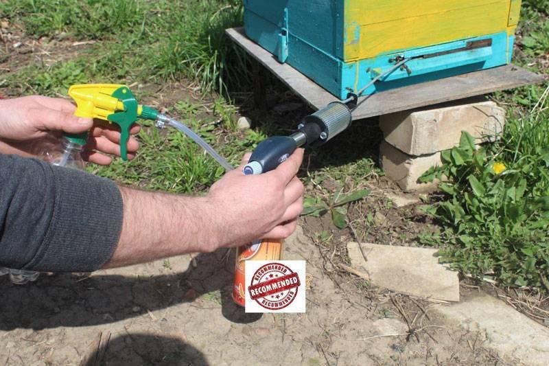 Обработка пчел бипином: как разводить и чем распылять