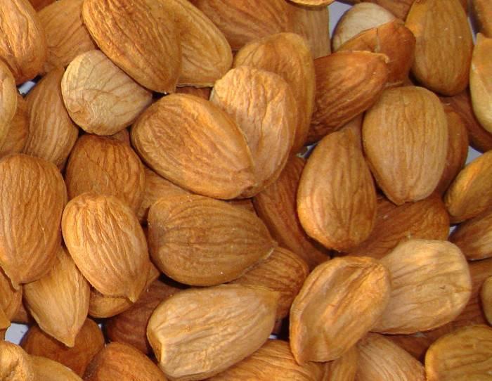 Косточки абрикоса: польза и вред для организма