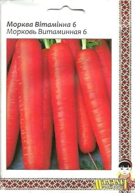 Морковь сорта витаминная 6 — сладкий продукт с дачной грядки. описание и характеристики