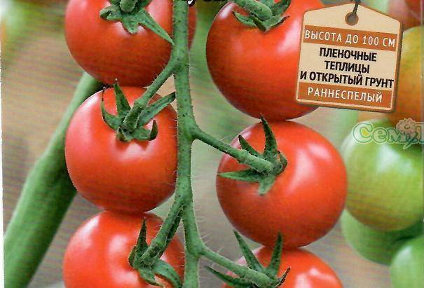Описание сорта томата удачный и его характеристики