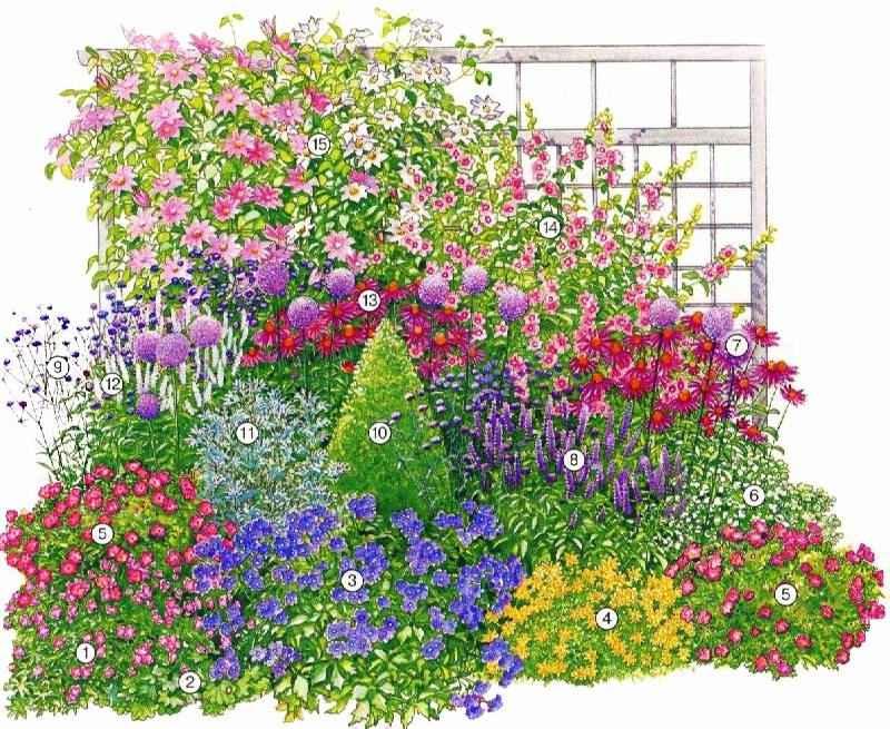 Миксбордер своими руками: схемы и фото, подбор растений, видео с идеями и примерами