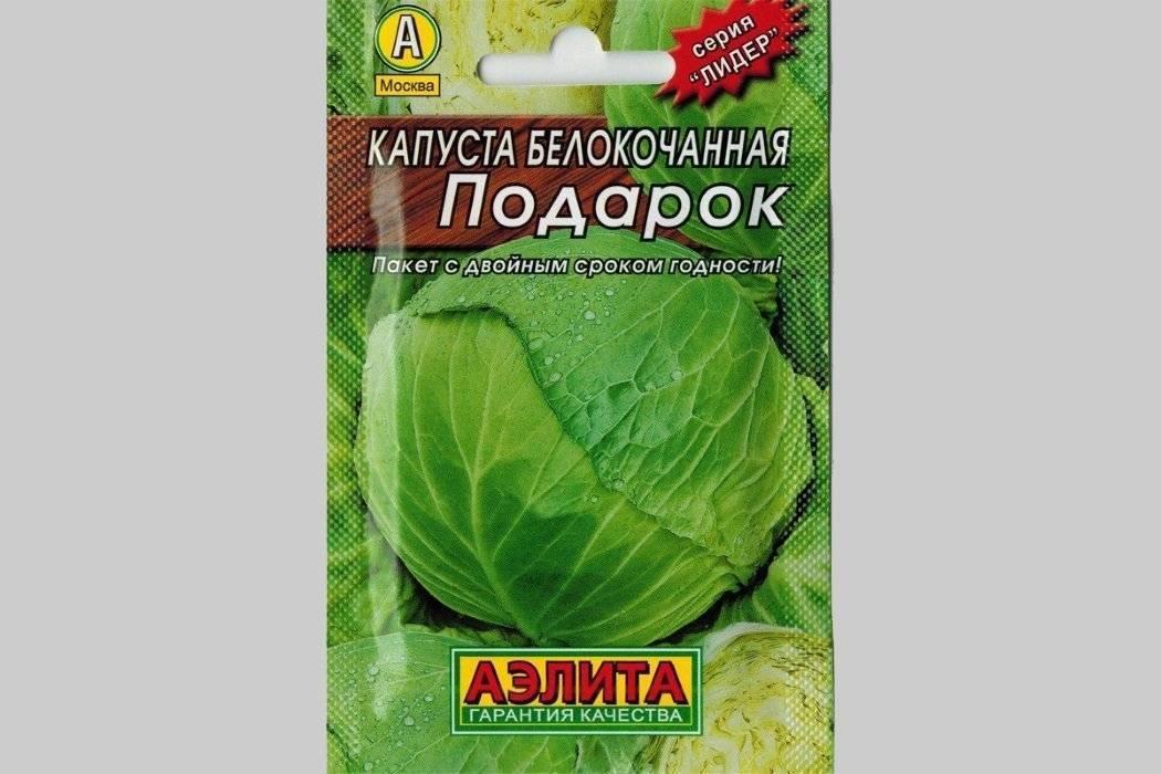 Описание и характеристика сорта капусты «подарок»
