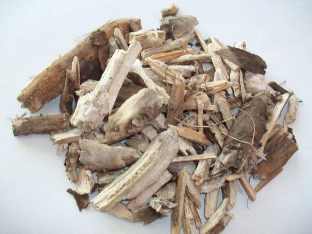 Полезные свойства корней подсолнуха :: польза и вред