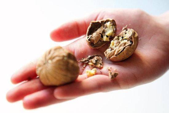 Как отмыть руки от пятен, проявляющихся после чистки грецких орехов, различными способами.