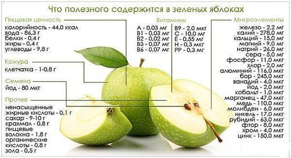 Старинная яблоня семеренко (ренет симиренко): описание, фото