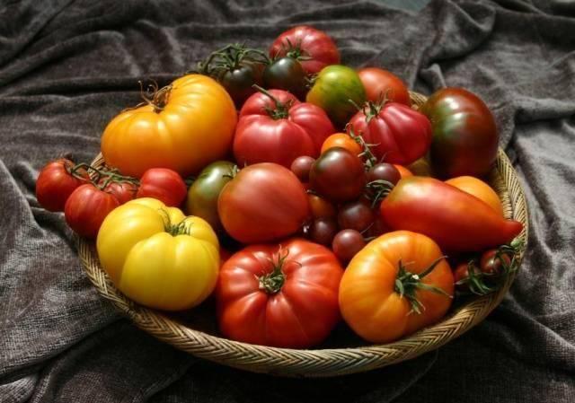 """Томат """"нужный размер"""": описание сорта, характеристики и фото помидоров"""