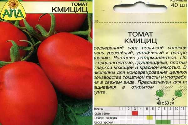 Томат кибиц: характеристика и описание гибридного сорта с фото