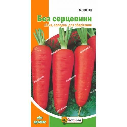 Лучшие сорта моркови для хранения на зиму - выбираем с умом!