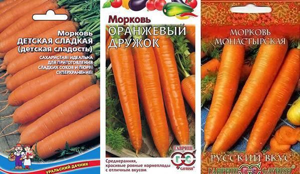 Самые сладкие сорта моркови