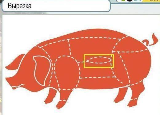 Разделка свиньи: особенности и схемы разделывания
