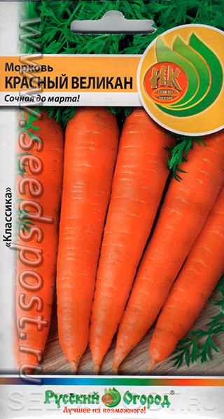 Характеристика и описание сорта моркови красный великан, выращивание