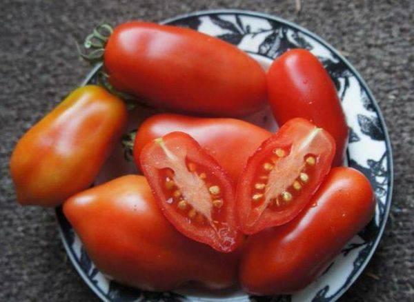 Сортовые томаты на моем огороде. лето 2019