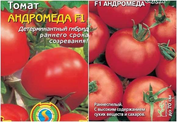 Помидорный гибрид волшебный каскад: свойства, описание, отзывы огородников о томате