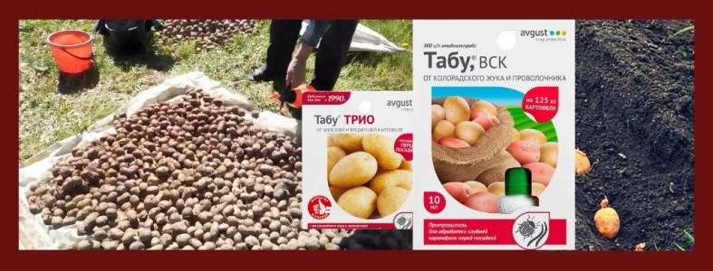 Препарат табу для обработки картофеля отзывы