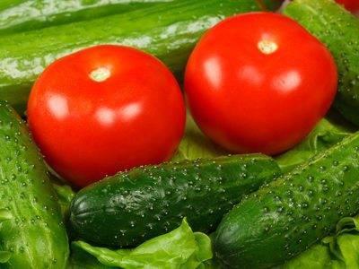 Действенная дрожжевая подкормка для огурца и помидоров