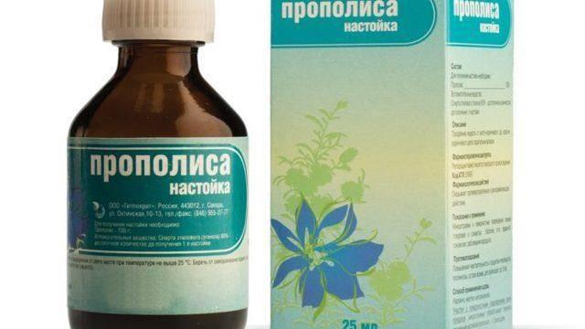 Лечение гайморита прополисом в домашних условиях: 5 рецептов - lechilka.com
