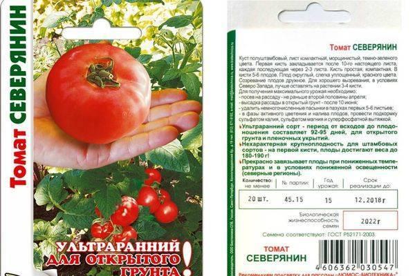 Лучшие раннеспелые и высокоурожайные сорта помидор для открытого грунта