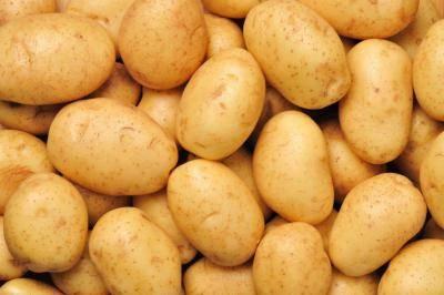 7 основных проблем с картофелем: болезни, их признаки, профилактика и средства борьбы