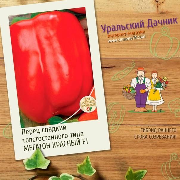 Яркие грядки: сладкий перец сорта гигант красный f1