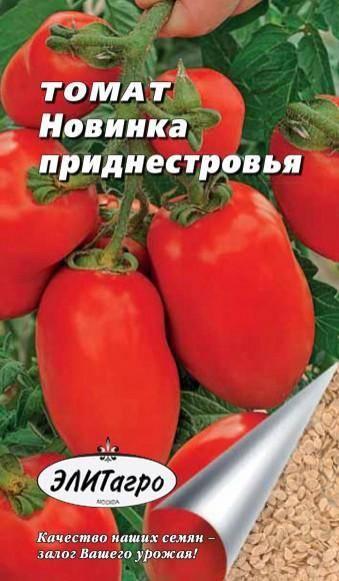 Сорт томата новинка приднестровья