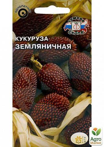 Декоративная земляничная кукуруза: описание, выращивание, уход и применение