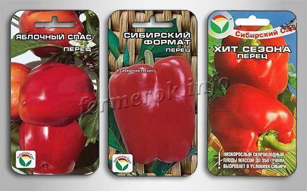 Описание устойчивого к томатным заболеваниям сорта «сахарный гигант»: выращивание и фото помидоров