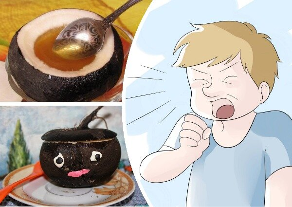 Черная редька: польза и вред, лечебные свойства для здоровья, рецепты приготовления