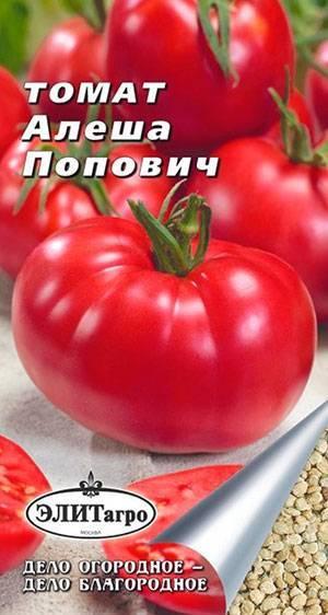 Томат алеша попович: описание сорта, посадка и уход
