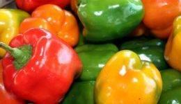 10 проверенных сортов толстостенного перца