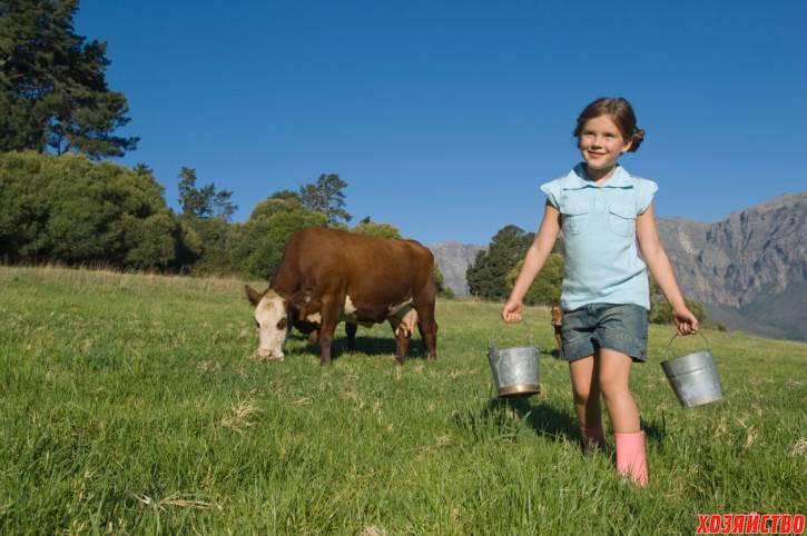 Глисты у коров и телят: симптомы и лечение, перечень препаратов