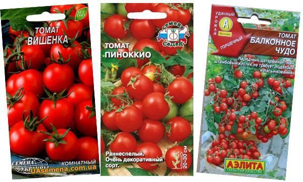 Лучшие сорта томатов для балкона