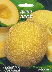Сорта дыни и особенности её выращивания для разных регионов