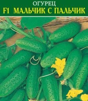 Сорт огурцов апрельский f1: описание и характеристика, отзывы