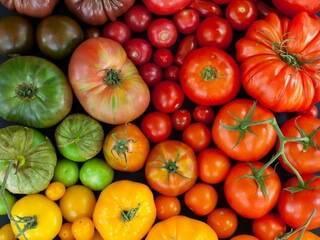 Крупноплодные сорта томатов – 10 гигантов