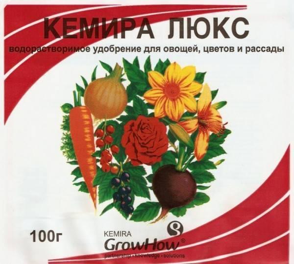 Комплексное удобрение для томатов: лучшие активаторы роста и минеральные средства для рассады помидоров, а также советы по их применению