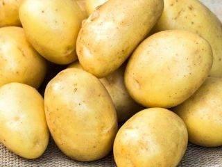Сорт картофеля джура (айл оф джура, isleofjura): отзывы, характеристика, агротехника выращивания
