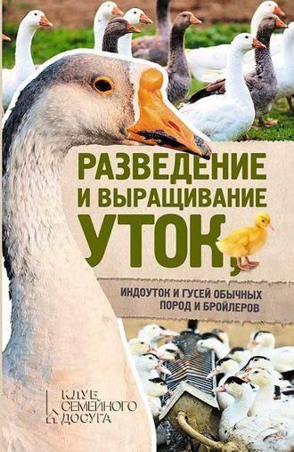 Бройлерные утки (19 фото): распространенные породы с описанием, особенности выращивания уток-бройлеров в домашних условиях
