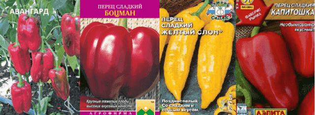 Мясистые толстостенные перцы (новинки 2020)
