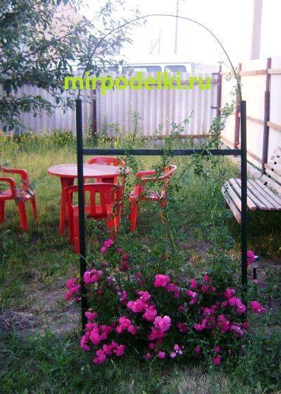 Выбираем подходящую опору для плетистой розы