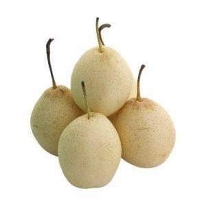 Китайская груша: как выглядит, польза и вред груши, где растет и какая калорийность